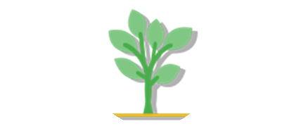 3 months membership icon of a small tree